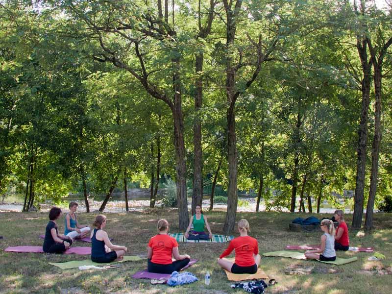 Cours de yoga sous un arbre