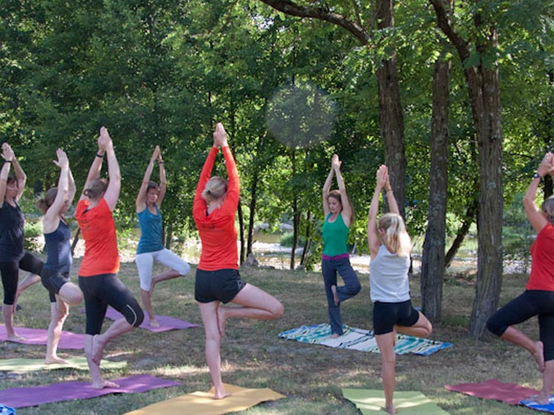 Yoga class under a tree