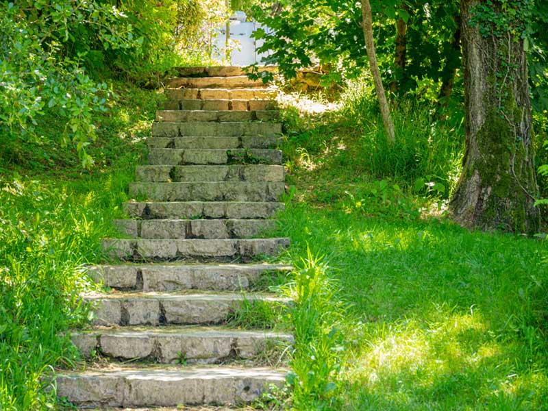 Treppen für einen Naturspaziergang
