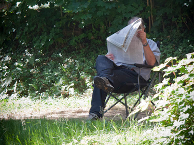 A man reads a newspaper in the shade of the trees