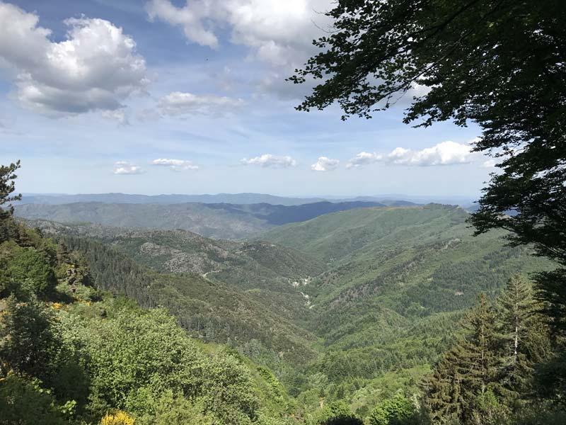 sentier du Mont Aigoual