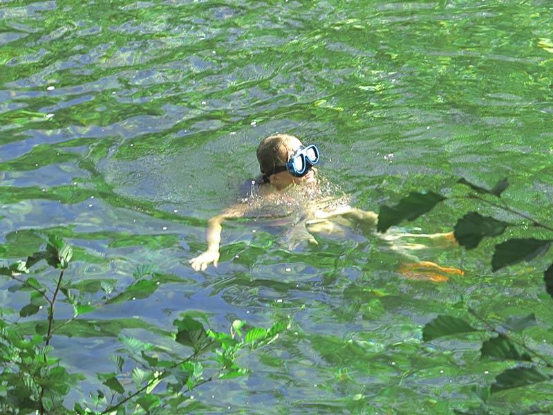 snorkeling dans le gardon