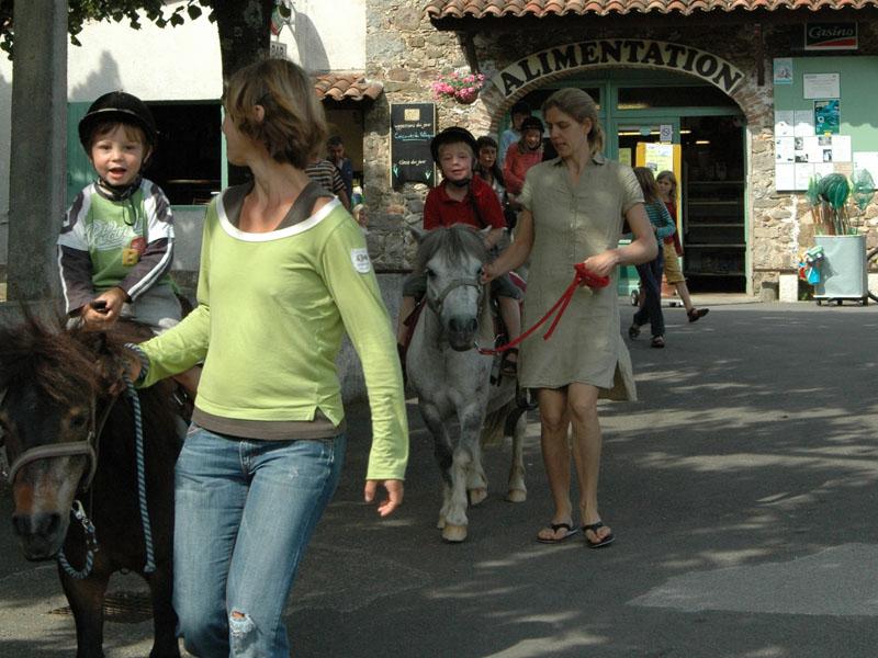 famille et poneys