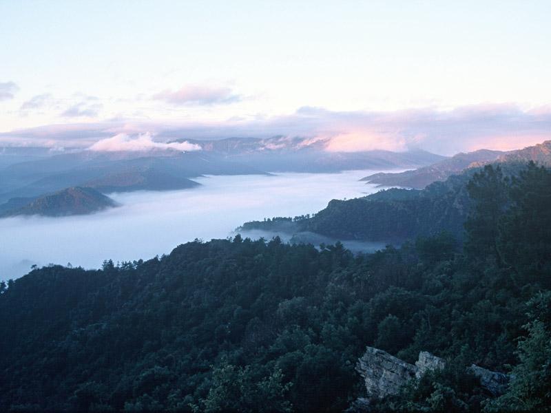 Vallée Borgne