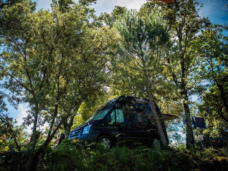 Camion aménagé sur un emplacement ombragé en Colline