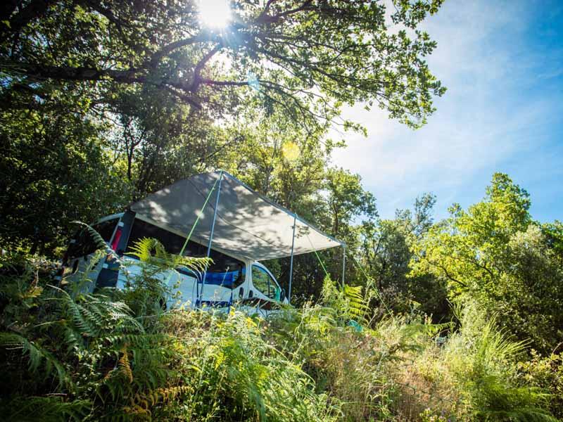 Van in the surrounding nature